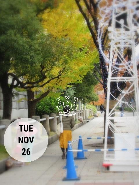 大阪紅葉さんぽ * 淀屋橋・中之島_f0236260_19303560.jpg
