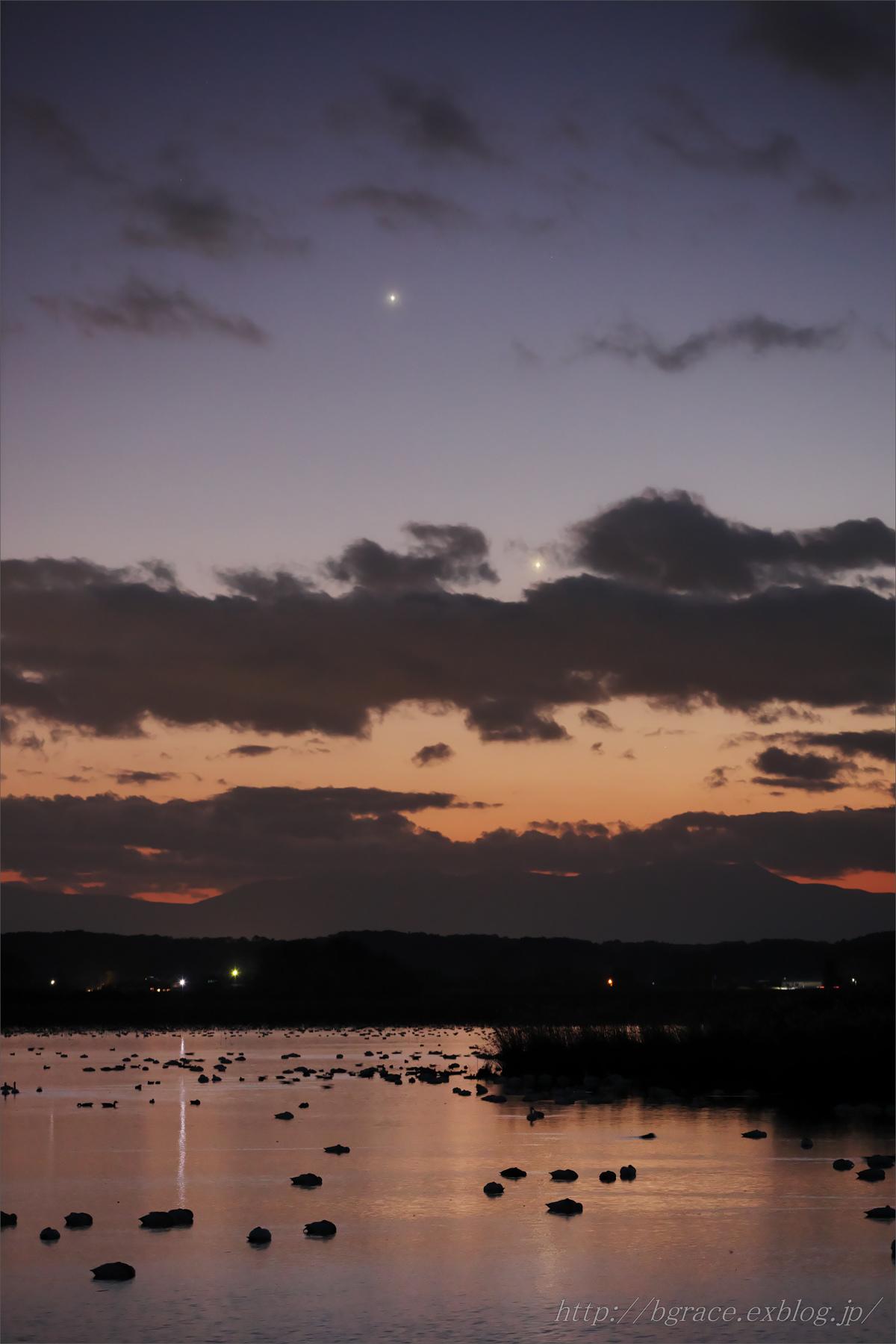 木星と金星の下で / 伊豆沼_b0191074_19465738.jpg