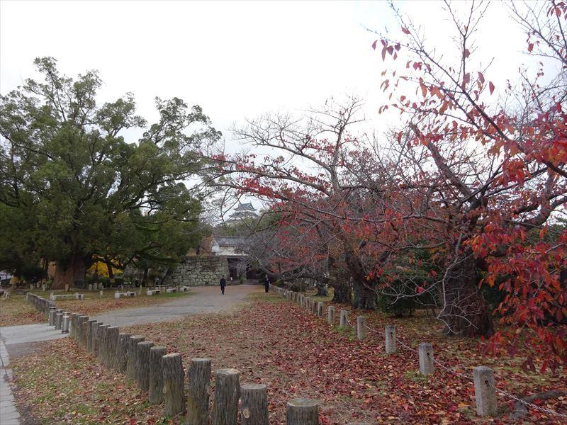 自転車遍路(高野山へ)1日目_e0201281_19131460.jpg