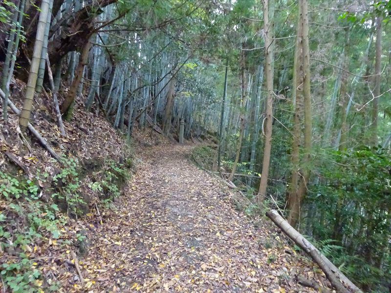 自転車遍路(高野山へ)1日目_e0201281_19133297.jpg