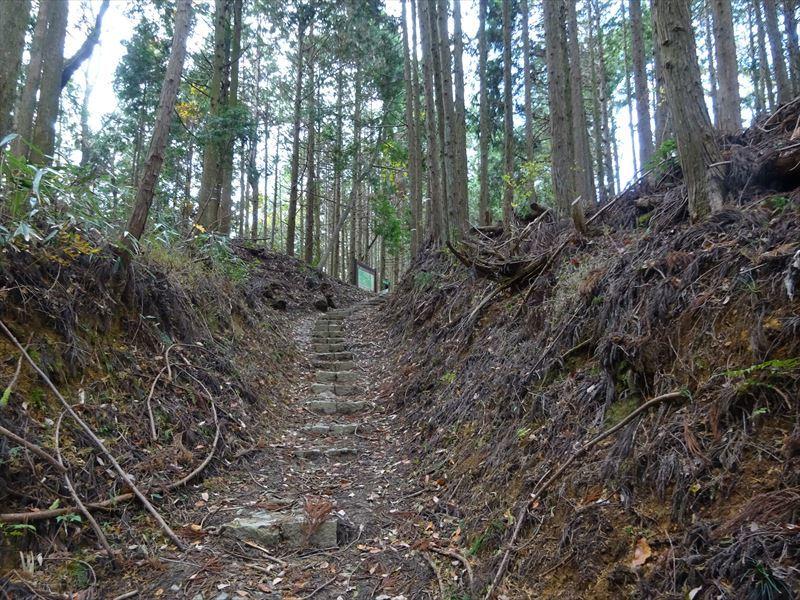 自転車遍路(高野山へ)1日目_e0201281_19262423.jpg