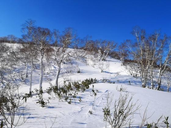 BCスキー 余市岳_d0198793_13122768.jpg