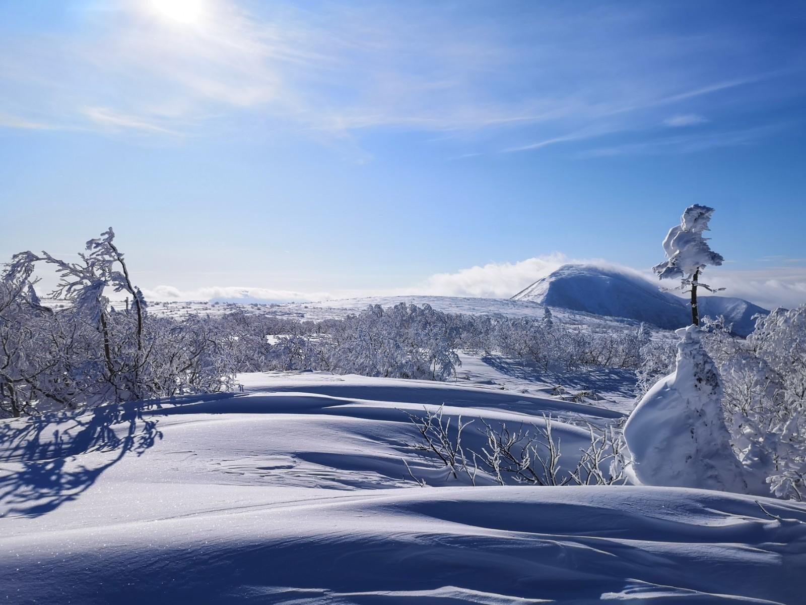 BCスキー 余市岳_d0198793_13512828.jpg