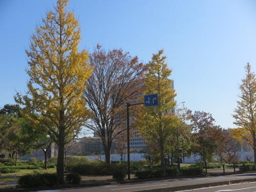 横浜みなとみらい21地区を散策_c0075701_07200631.jpg