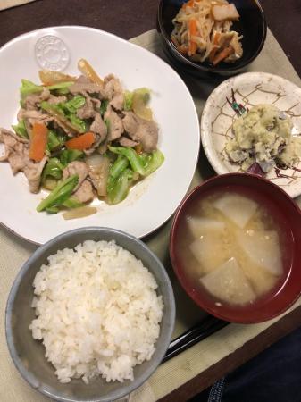 肉野菜炒め_d0235108_21423874.jpg