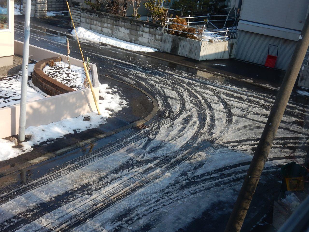 ほとんどの札幌の地域から積雪が消えました_c0025115_20552103.jpg