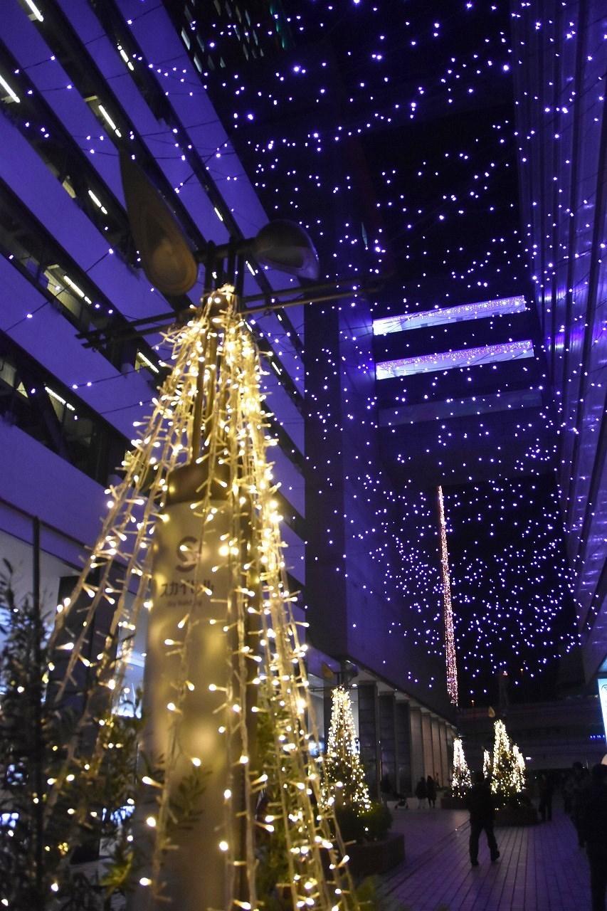 Yokohama illumination 光降る東口_d0065116_21370337.jpg