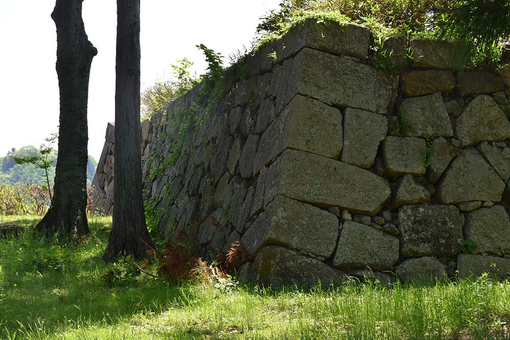 丹波国篠山城跡を歩く。 その4 ~本丸・天守台~_e0158128_17362369.jpg