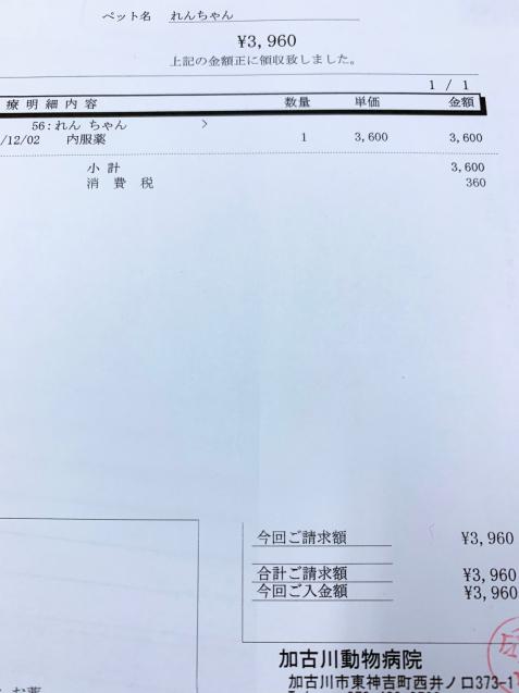 れんちゃん医療費のご報告_d0355333_14425697.jpg