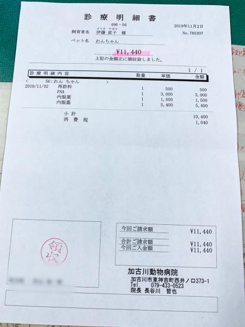 れんちゃん医療費のご報告_d0355333_15113393.jpg
