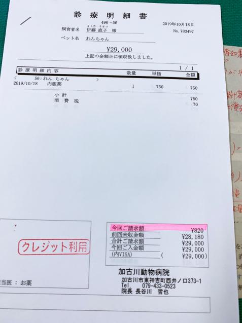 れんちゃん医療費のご報告_d0355333_15113453.jpg