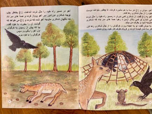アフガニスタン教育支援活動の絵本が出来上がりました❣️❣️_a0071934_18361926.jpg