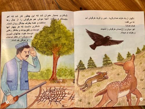 アフガニスタン教育支援活動の絵本が出来上がりました❣️❣️_a0071934_18394550.jpg