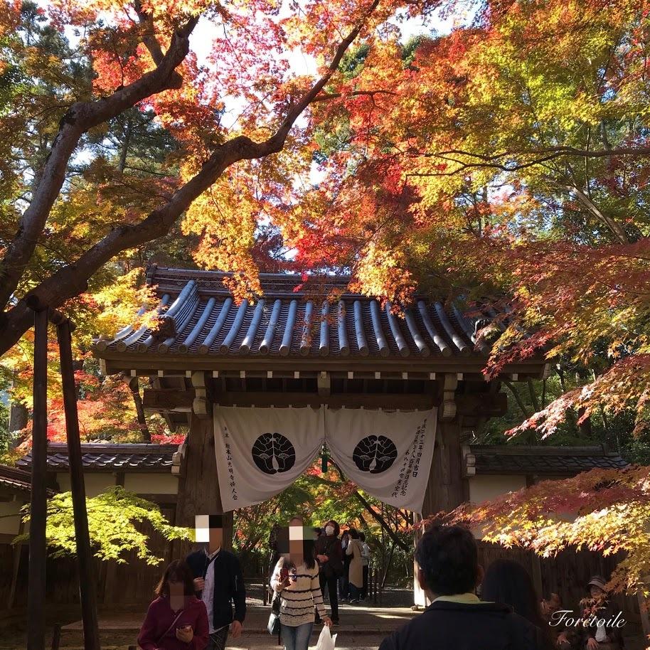 京都観光_f0377243_13102328.jpg