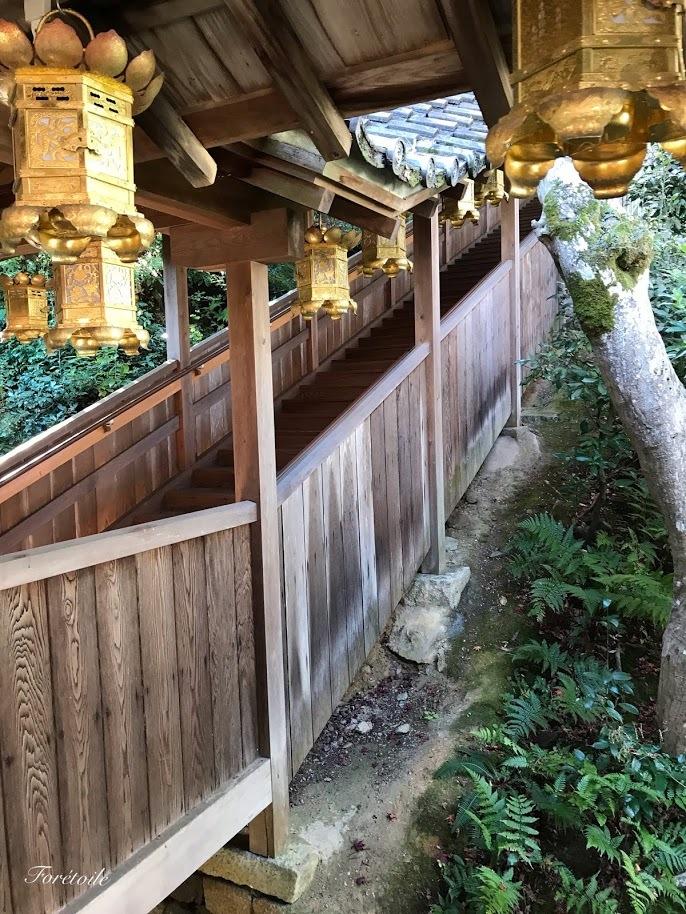 京都観光_f0377243_13123543.jpg