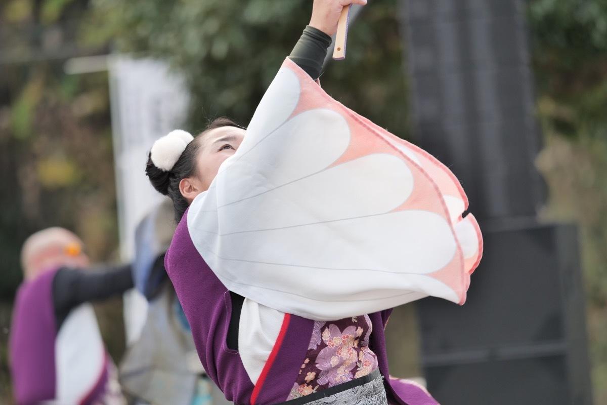 2018日原らっせによさこい祭りその20(つわの風雅蒼淙その2)_a0009554_00250541.jpg