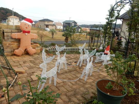 '19,12,11(水)こころとクリスマスとビーフストロガノフ!_f0060461_10054843.jpg