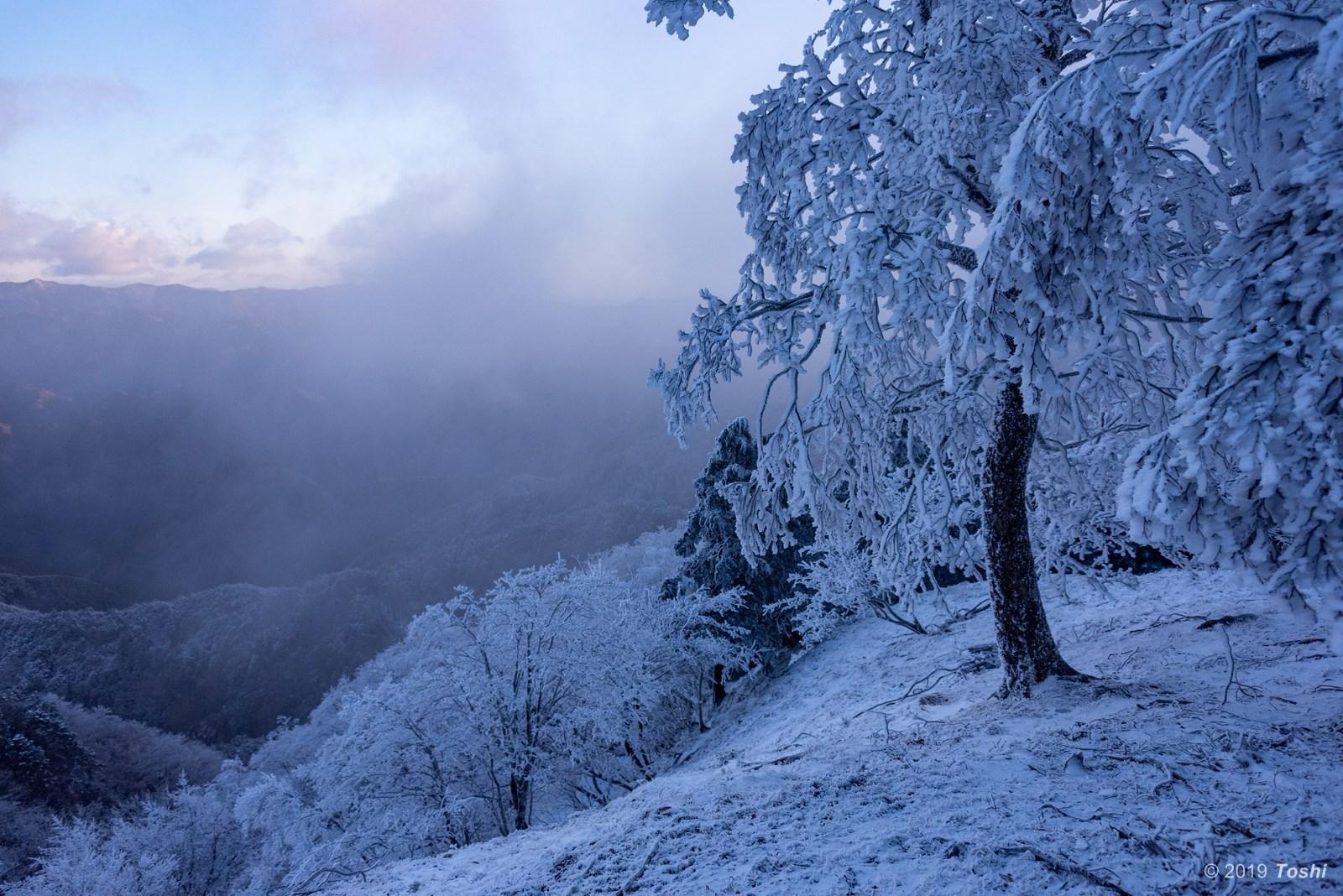 大台ヶ原が凍る日 1_c0350572_21555837.jpg