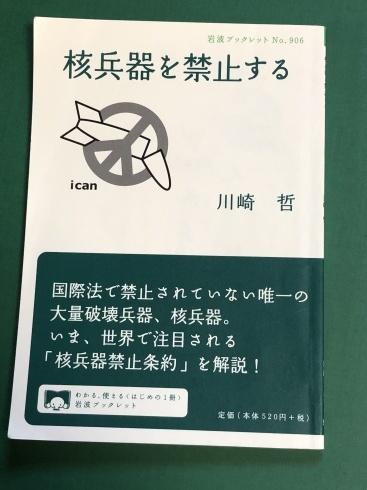 核兵器禁止条約署名批准を!の請願:経過①_c0052876_23462470.jpg