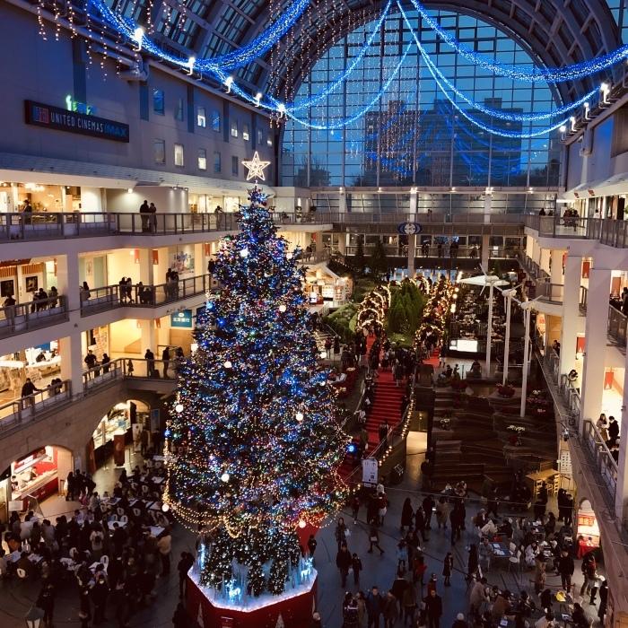 クリスマス近し_a0152283_09073086.jpeg