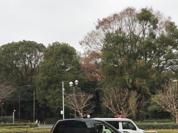 山種美術館 東山魁夷の青 奥田元宋の赤 ー色で読み解く日本画ー_e0397389_15440651.jpeg