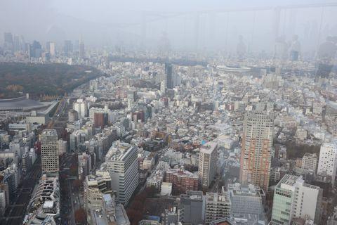 「WE ARE THE FARM」&渋谷スカイ_c0090198_18184951.jpg