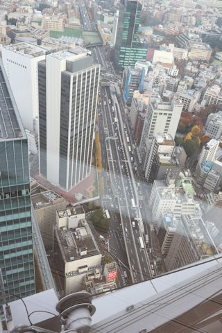 「WE ARE THE FARM」&渋谷スカイ_c0090198_18202887.jpg