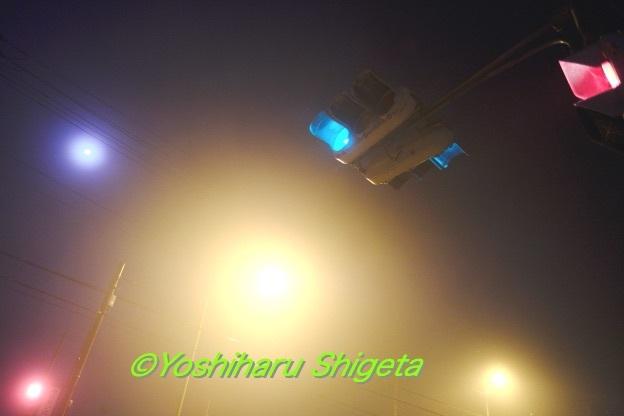 〜Signal〜_c0152400_20011108.jpg