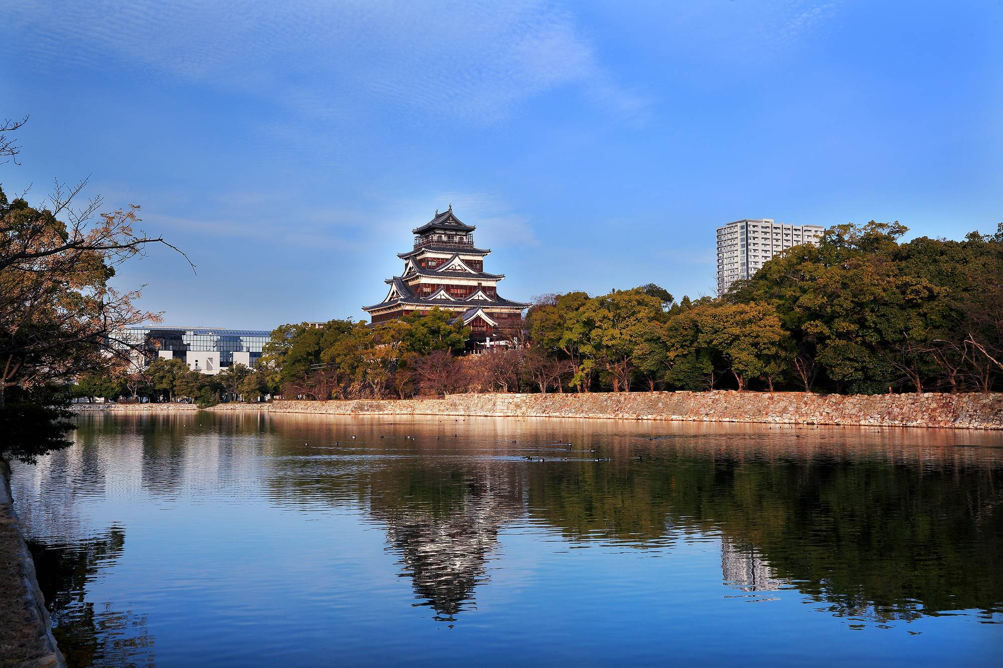 """青空に映える """"広島城"""" そのⅠ_a0140608_07563350.jpg"""