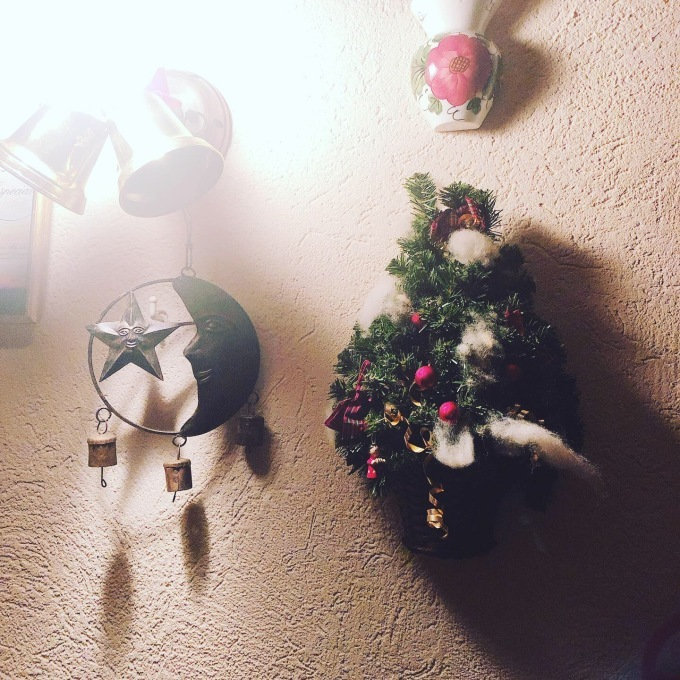 今年のクリスマスディナー_e0092612_23211787.jpeg