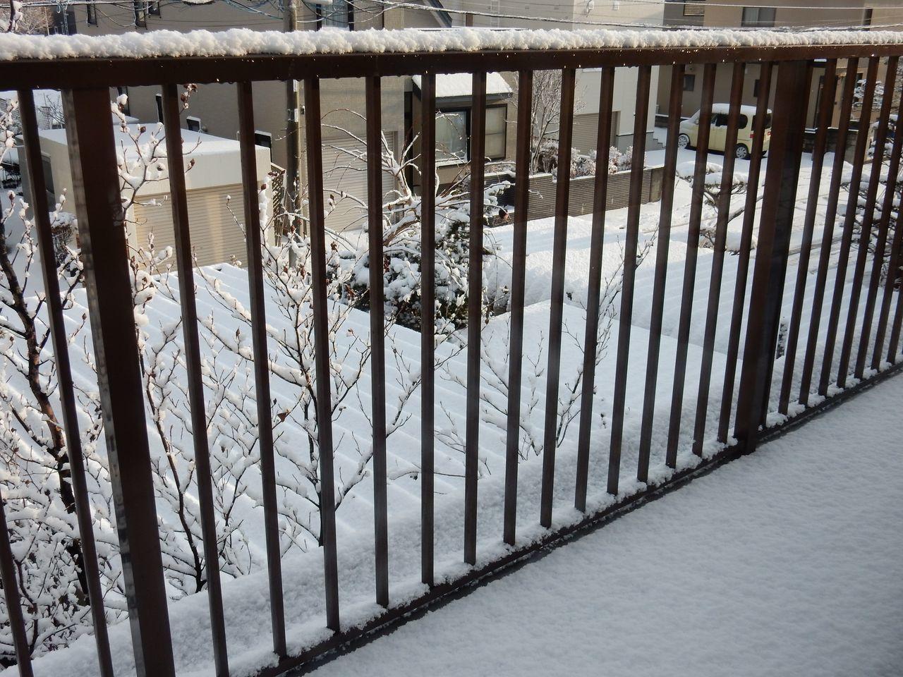 雪戻る_c0025115_21272461.jpg