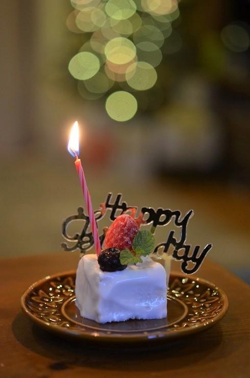 cottonのお誕生日_d0207515_21544028.jpg