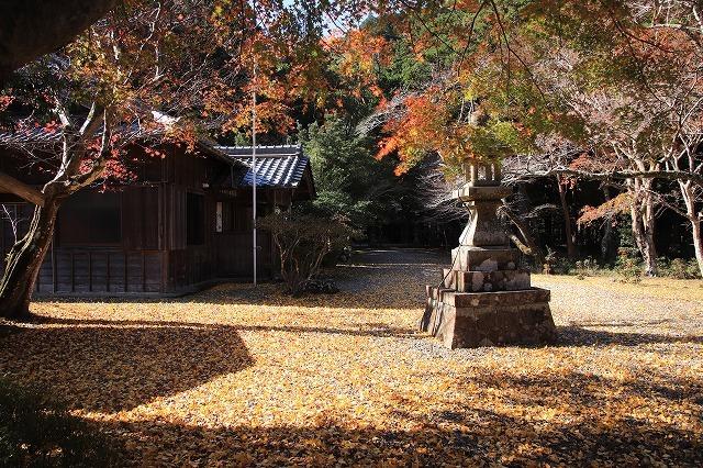 八柱神社の紅葉(その1)(撮影:11月30日)_e0321325_14564054.jpg