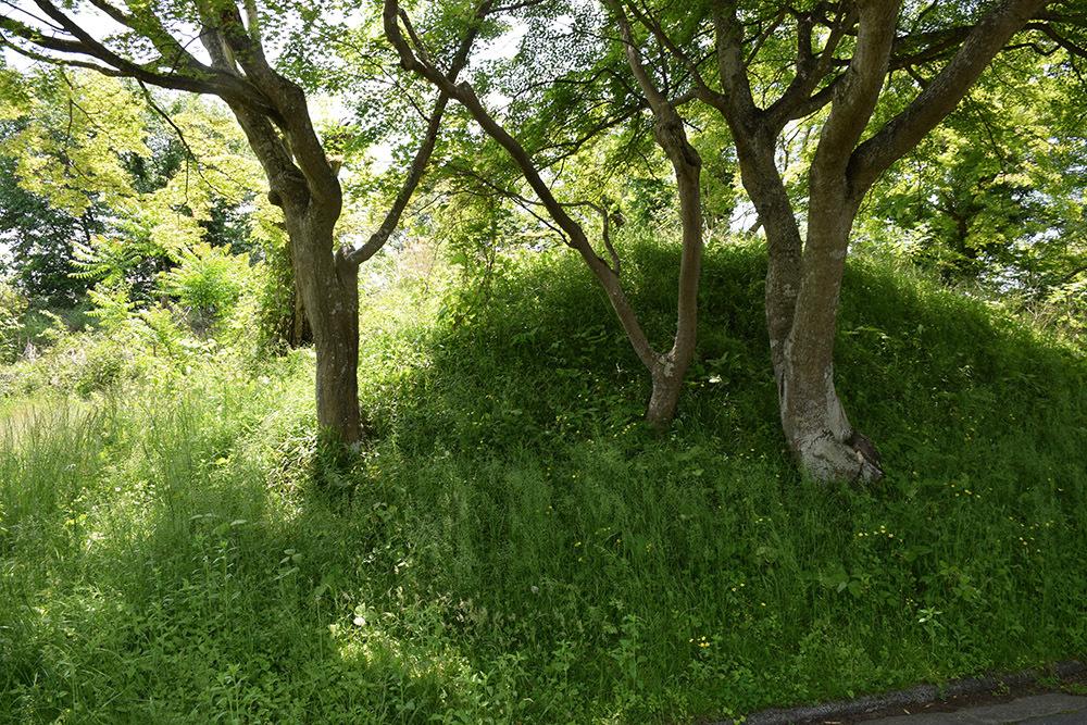 丹波国篠山城跡を歩く。 その5 ~三の丸、外堀、馬出~_e0158128_15434658.jpg