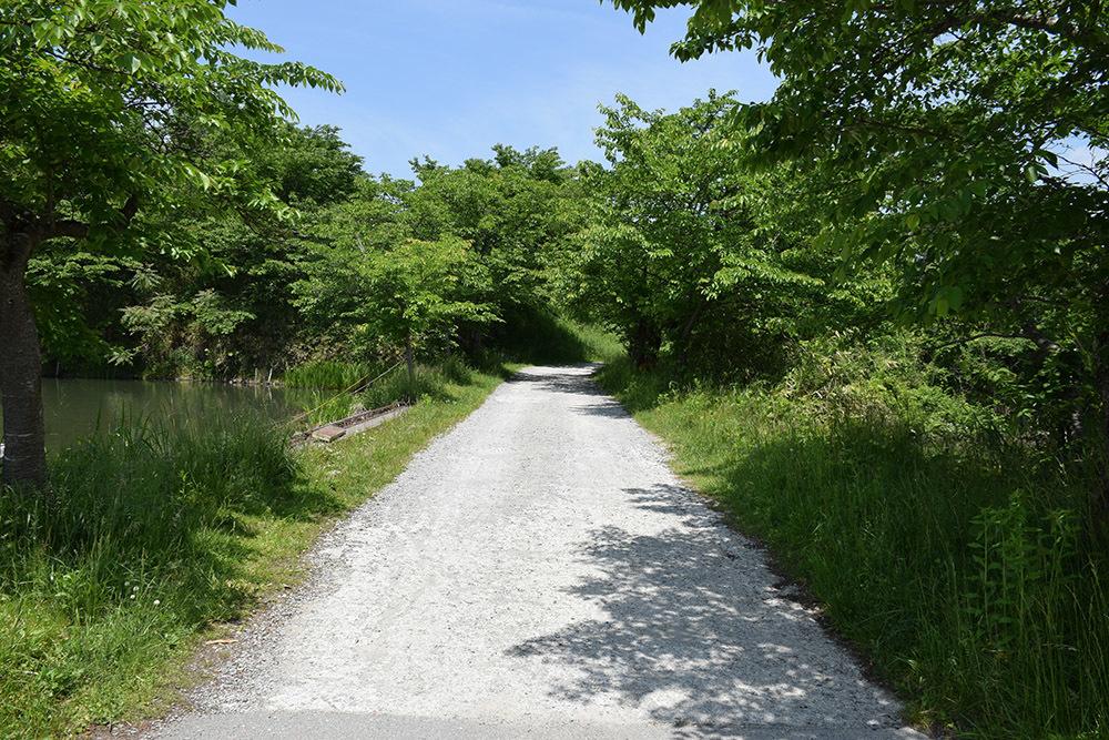 丹波国篠山城跡を歩く。 その5 ~三の丸、外堀、馬出~_e0158128_15451877.jpg