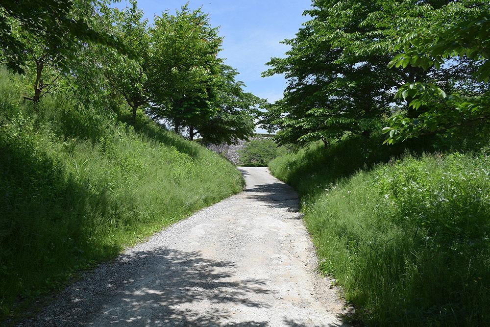 丹波国篠山城跡を歩く。 その5 ~三の丸、外堀、馬出~_e0158128_15464997.jpg