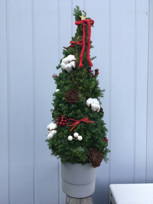 クリスマスツリーのレッスンも大詰め_f0155431_21312974.jpg