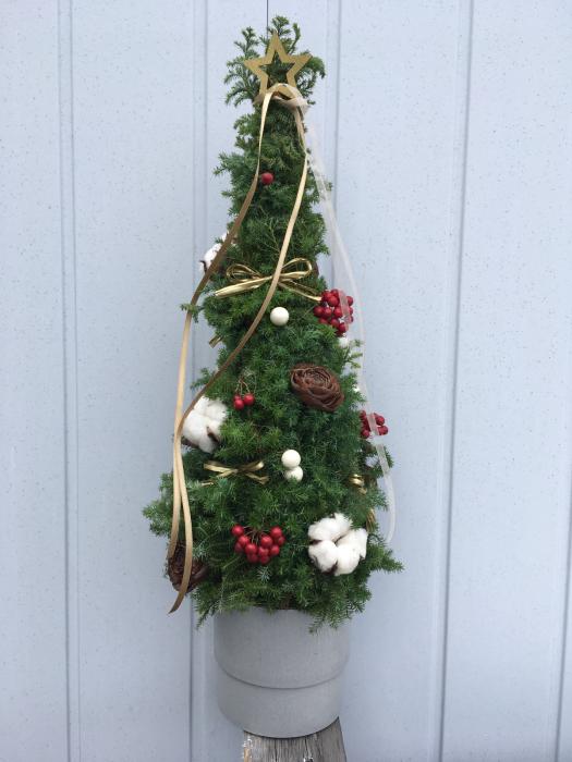 クリスマスツリーのレッスンも大詰め_f0155431_21313027.jpg