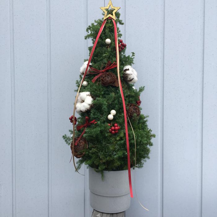 クリスマスツリーのレッスンも大詰め_f0155431_21313499.jpg