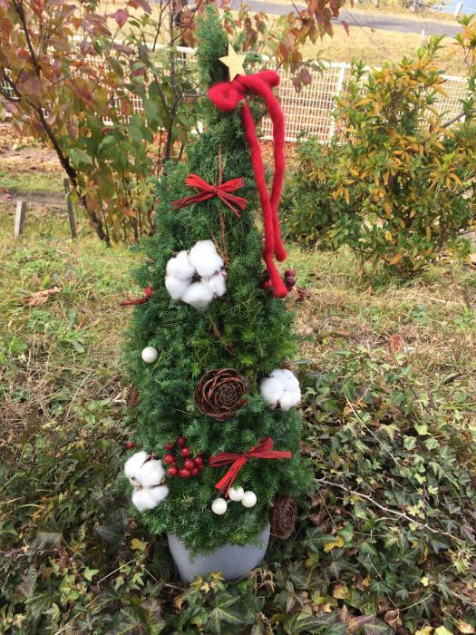クリスマスツリーのレッスンも大詰め_f0155431_21320068.jpg