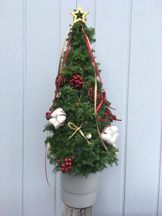 クリスマスツリーのレッスンも大詰め_f0155431_21350041.jpg