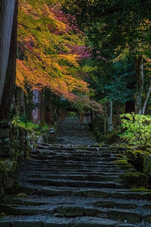 2019滋賀寺社~百済寺_e0363038_16343489.jpg