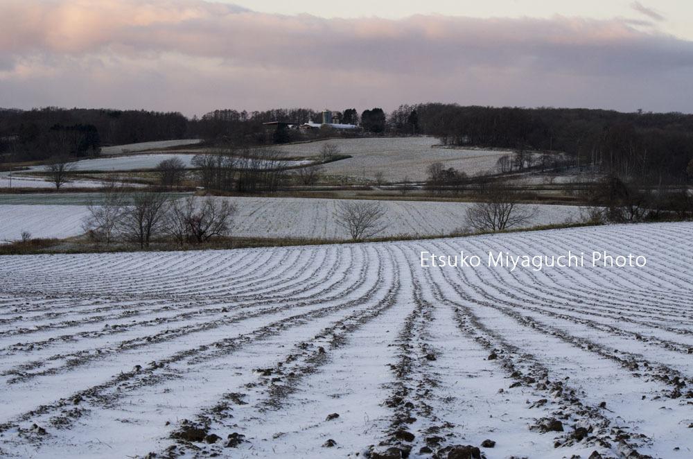 冬の始め_f0152939_18261761.jpg