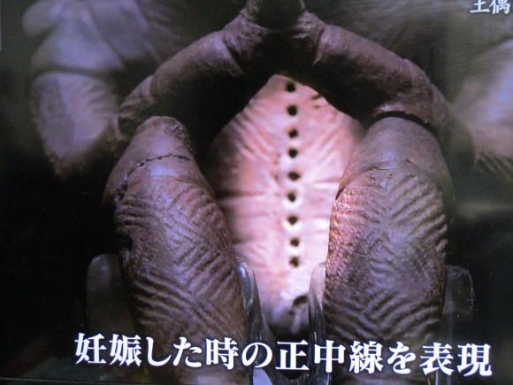 古代史に密かな激震・NHKは突き進む_a0237545_10190649.jpg