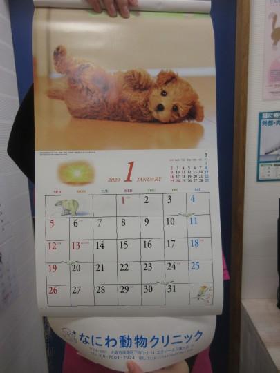 2020年のカレンダーお配りしております!_e0339146_12392498.jpg