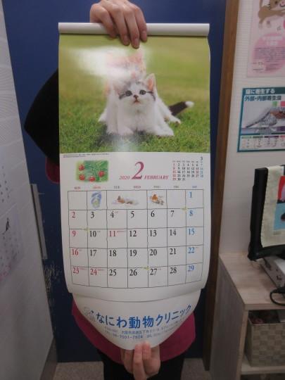 2020年のカレンダーお配りしております!_e0339146_12394466.jpg