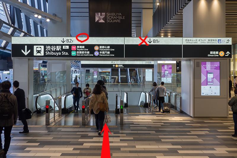 渋谷駅ガイド・井の頭線ー東横線_a0003650_17022410.jpg