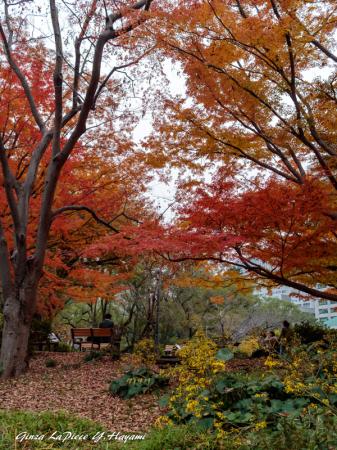 東京の風景 日比谷公園_b0133053_01344265.jpg