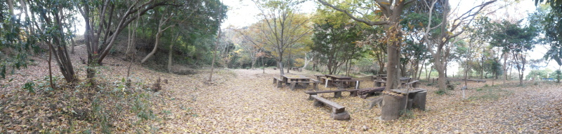 ぼうけん山コクランの道周辺間伐・・・うみべの森_c0108460_17232713.jpg