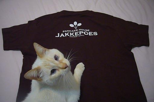 Staff T-shirts._c0153966_14090582.jpeg